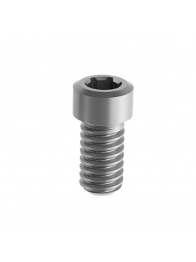 Screw for Multi Labo abutment